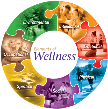 picture1-wellness-circle